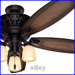 54 Hunter Traditional Ceiling Fan in Brittany Bronze with Light Kit, Ships Free