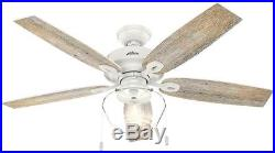 Ceiling Fan Light Kit Crown Canyon 52 In. LED Outdoor Home Decor Fresh White
