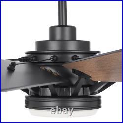 Ceiling Fan Light Kit Trudeau 60 LED Indoor Matte Black Remote Control Speed 9