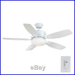 HDC Molique 54in. Indoor/Outdoor Ceiling Fan with Light Kit and Wall Controller