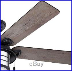 Hunter 54 in. Indoor/ Outdoor Weathered Zinc Gray Ceiling Fan with Light Kit