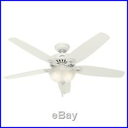 Hunter 56 inch Snow White Ceiling Fan with Bowl Light Kit & Swirled Marble Glass