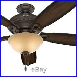 Hunter Fan 52 in. Traditional Ceiling Fan with LED Bowl Light Kit in Onyx Bengal