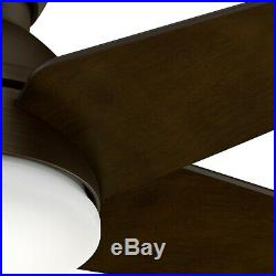 Hunter Fan 52 inch Low Profile Brushed Cocoa Indoor Ceiling Fan with Light Kit