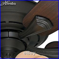Hunter Fan 52 inch New Bronze Casual Ceiling Fan with Tea Stained Glass Light Kit