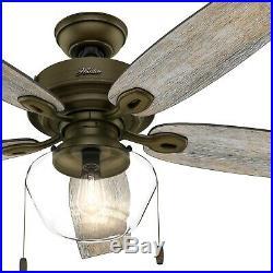 Hunter Fan 52 inch Regal Bronze Outdoor Ceiling Fan with Globe Light Kit