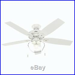 Hunter Fan 52 inch Traditional Fresh White Damp Ceiling Fan with Light Kit