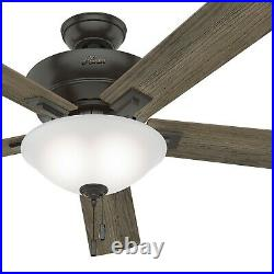 Hunter Fan 60 inch Casual Noble Bronze Ceiling Fan with Light Kit and Pull Chain