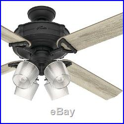 Hunter Fan 60 inch Natural Iron Ceiling Fan with Light Kit and Remote Control